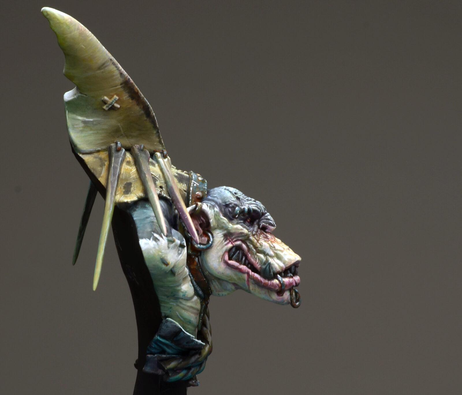 Sharky13