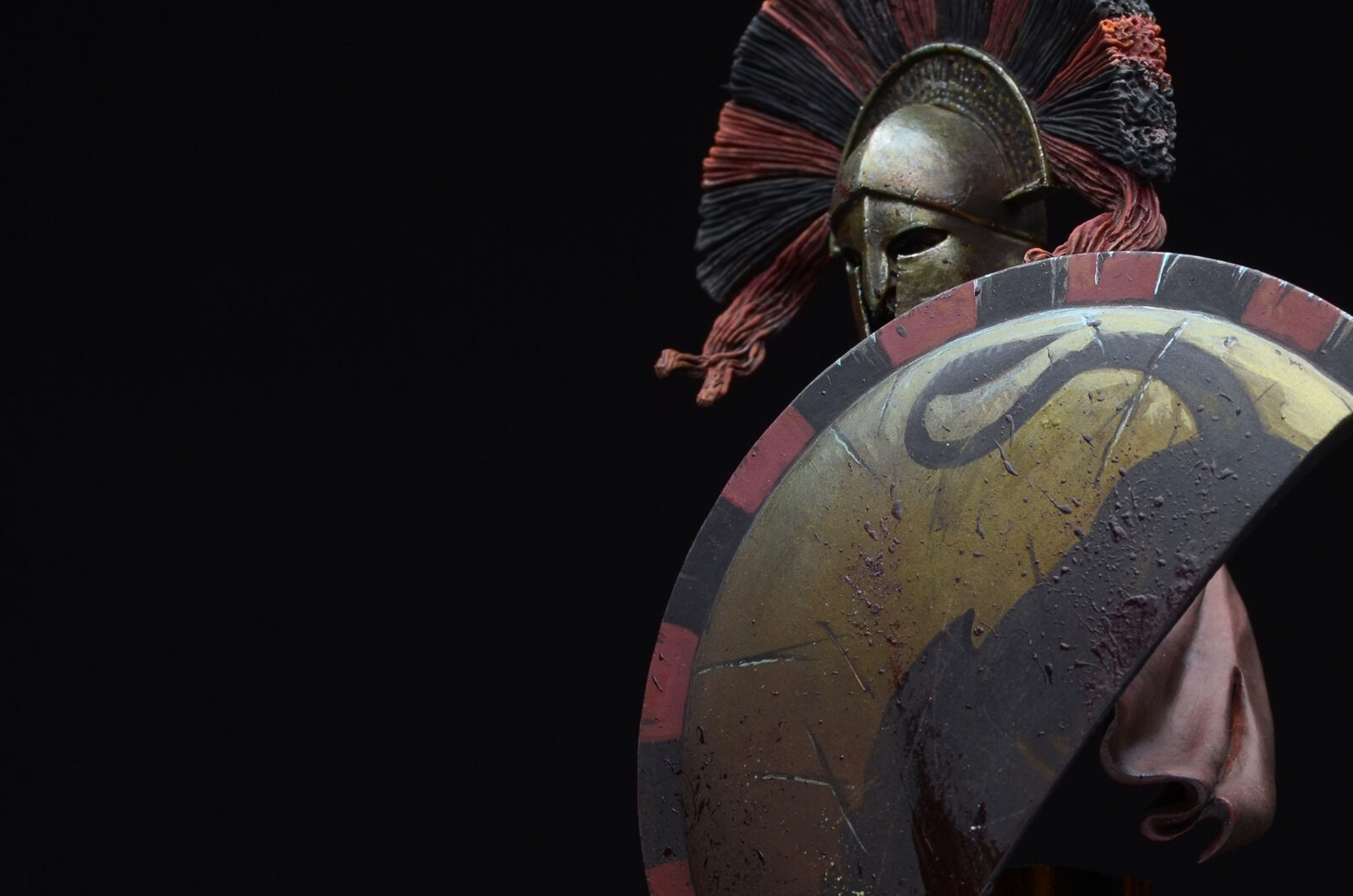 Spartan Warrior19
