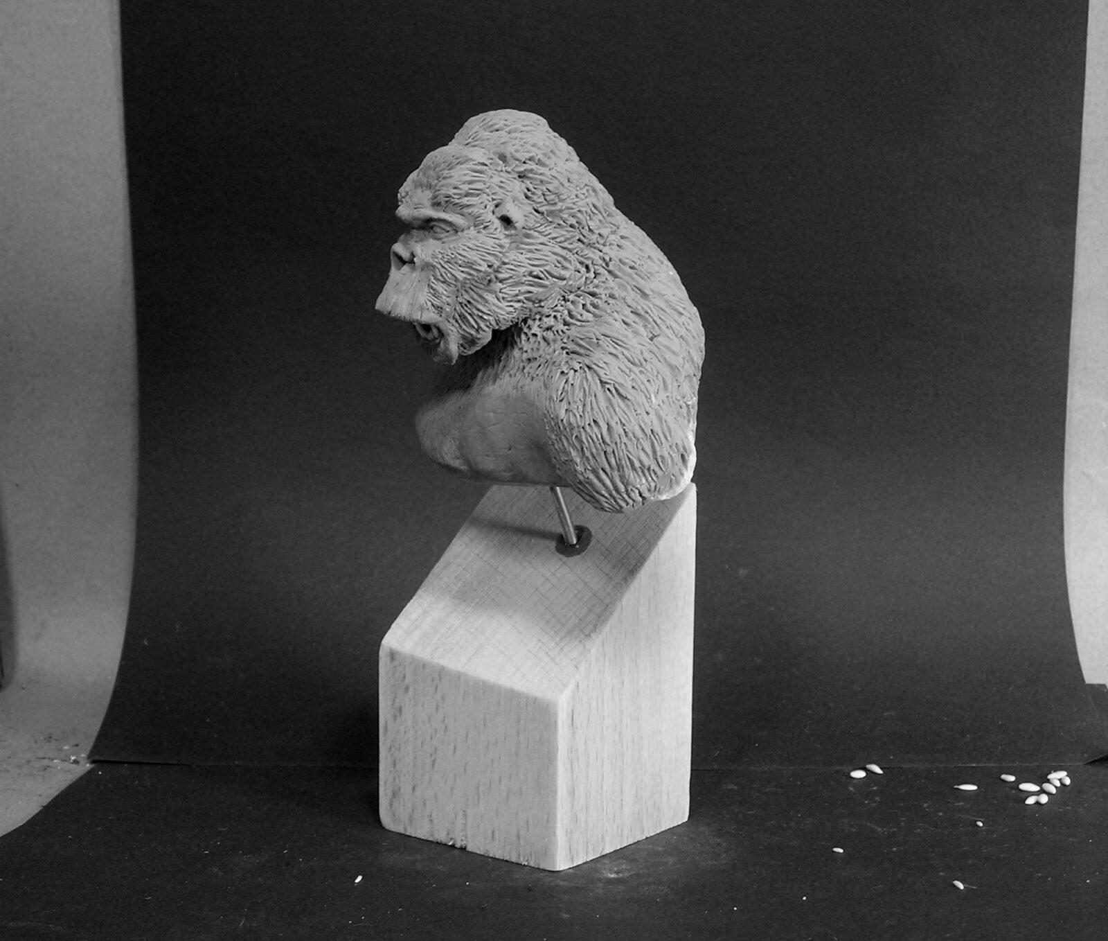 Gorilla03