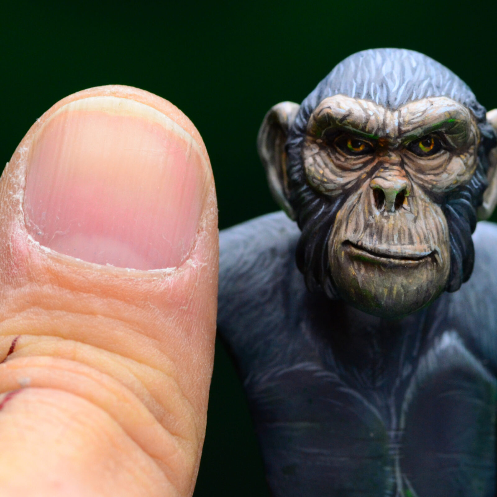 Monkey06
