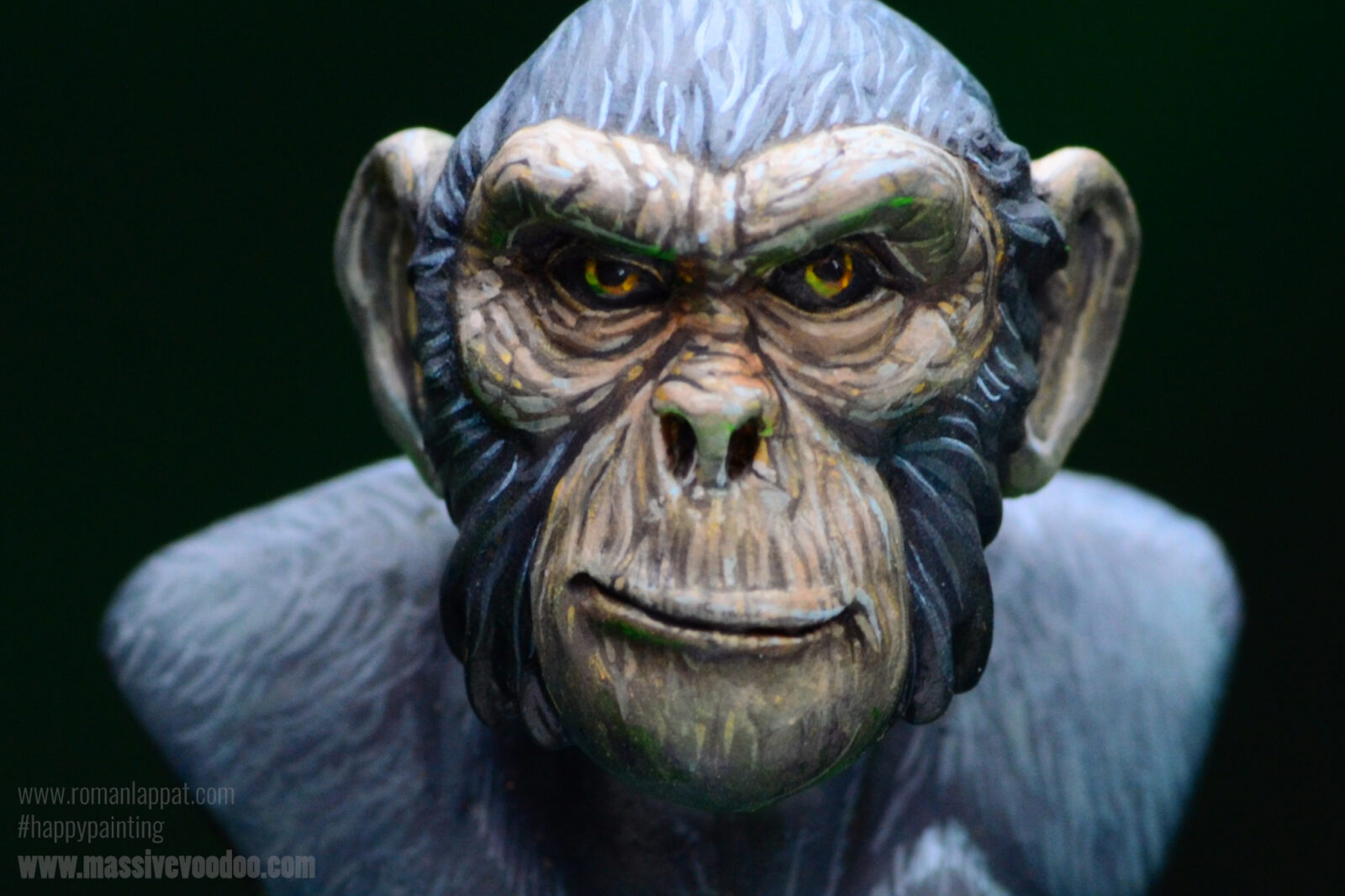 Monkey09