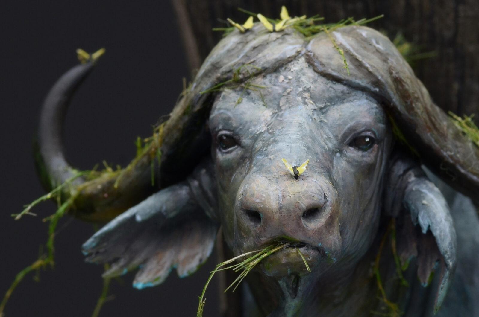 Waterbuffalo02