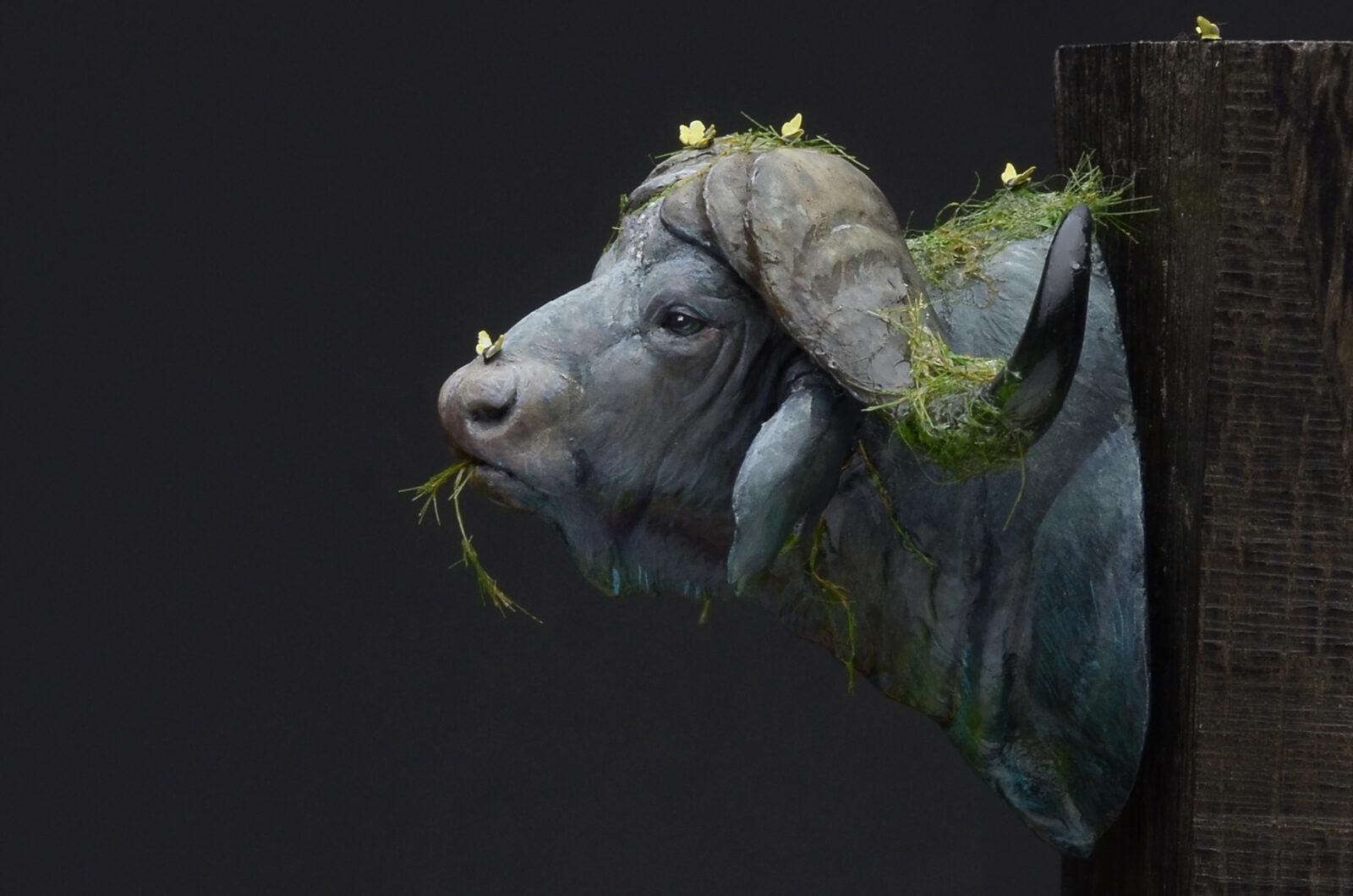 Waterbuffalo04