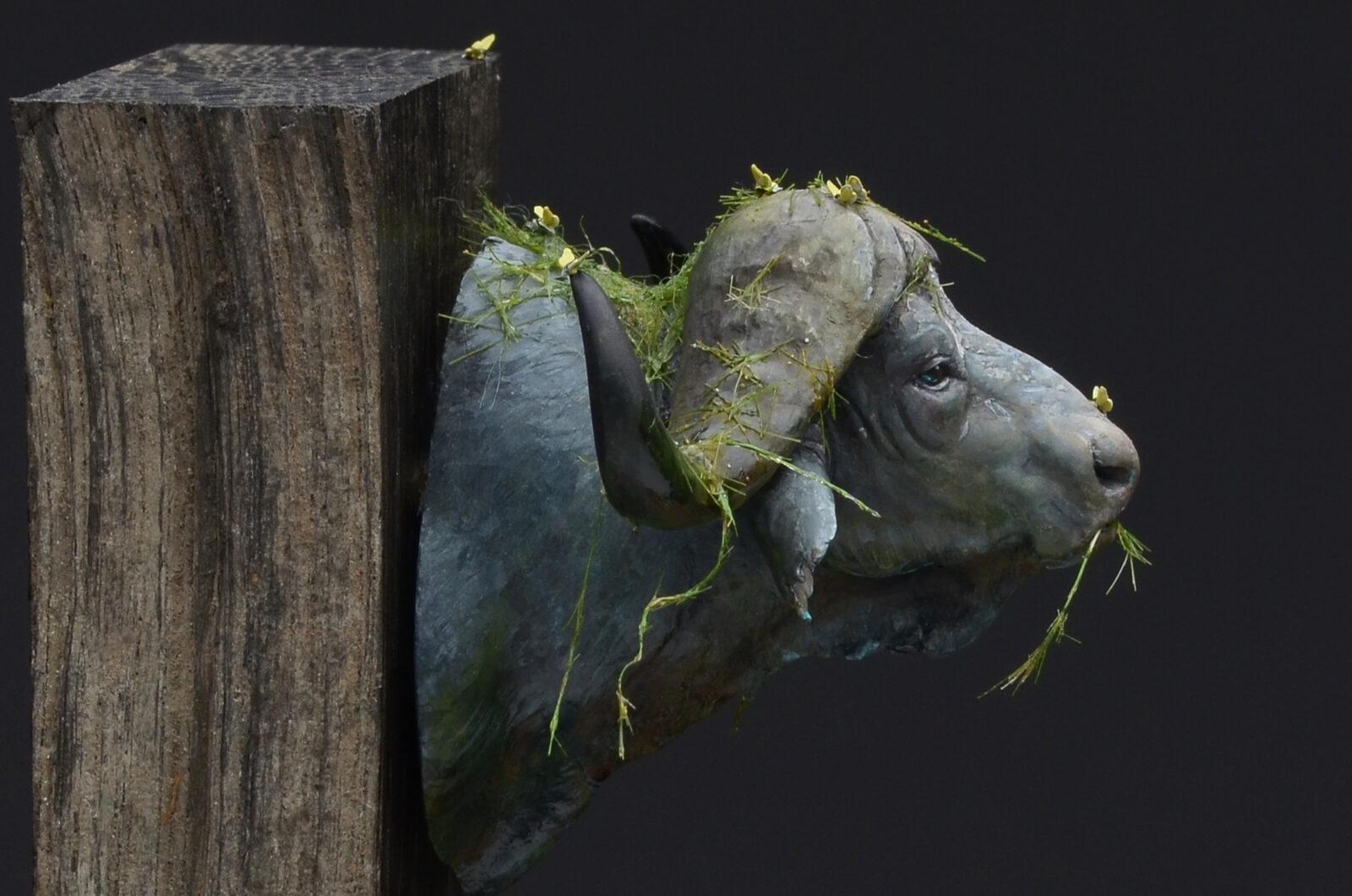 Waterbuffalo05