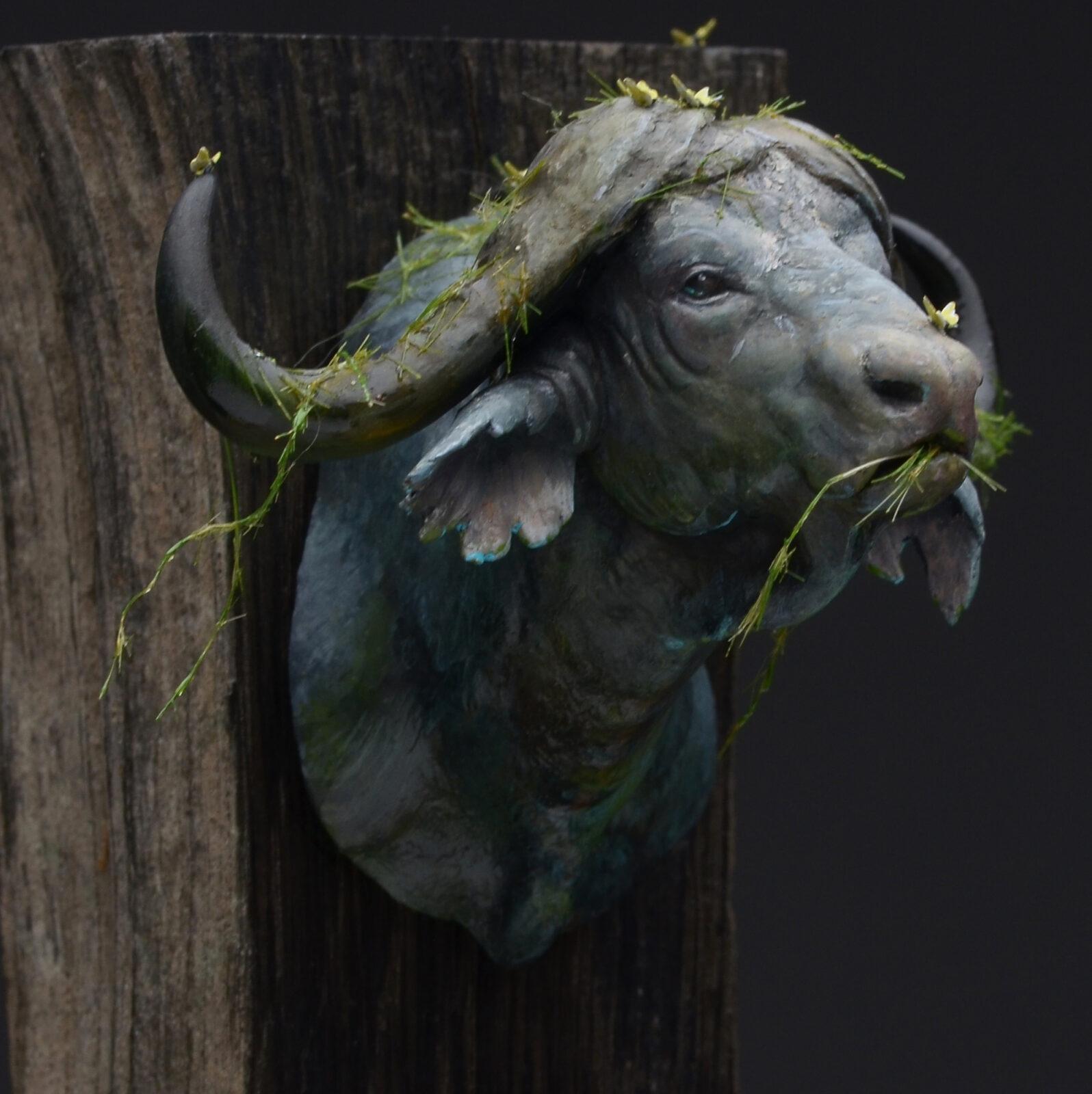 Waterbuffalo07