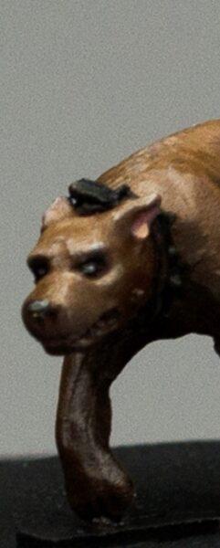 Hund Thumb