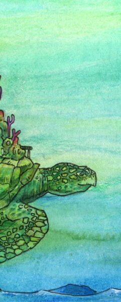Schildkröte  Thumb2