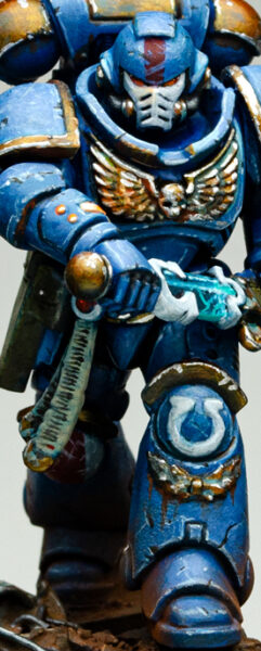 Ultramarineprimaris Thumb