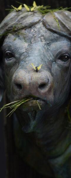 Waterbuffalo  Thumb2